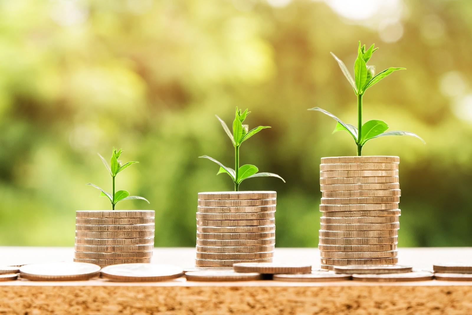 Geldanlage mit Wachstum