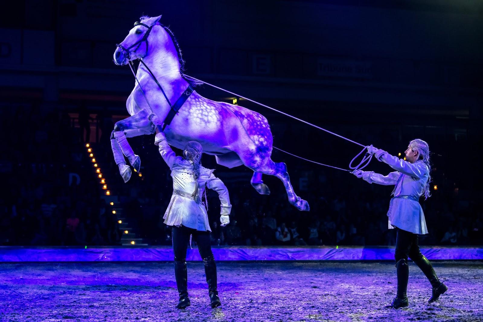 Die größte Pferdeshow in Europa
