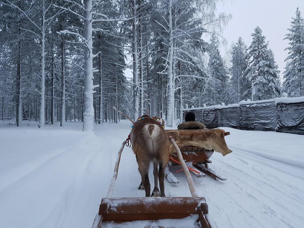 Winterreiseziel Finnland